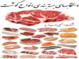 خط بسته بندی گوشت قرمز، مرغ، بلدرچین، بوقلمون، ماهی WASI