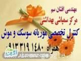 مرکزتخصصی کنترل موریانه اصفهان افشان 09133191480