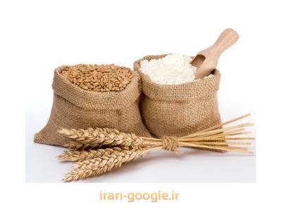 شرکت بازرگانی اریس Eris تهیه و توزیع خوراک دام و طیور و آبزیان
