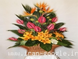گلستان نور - ارسال گل برای هر مناسبت