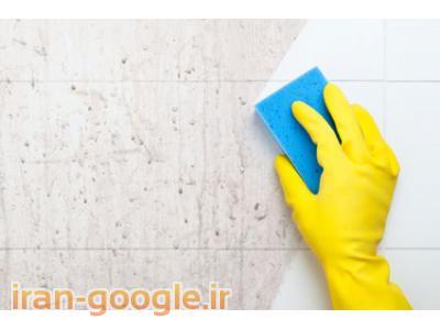 نظافت منزل در رشت
