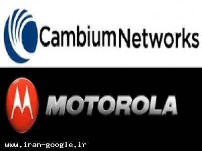 فروش Motorola , Cambium Networks