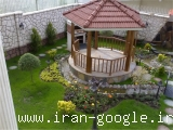 گل و گیاه تهران بن سای