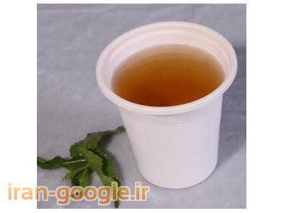 ظروف یکبار مصرف گیاهی - پهرم ظرف