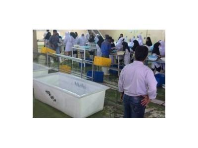 اجاره سردخانه زیر صفر در كرج و البرز