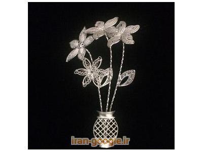گل نقره - شاخه گل نقره
