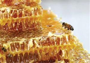 عسل فروشی طبیعی سبلان