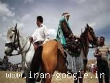 تور عشایر فارس