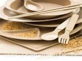 خط تولید ظروف یکبار مصرف گیاهی