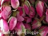 تور ویژه گلابگیری کاشان - نیاسر - مشهد اردهال