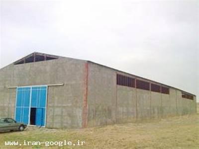 فروش زمین و سالن صنعتی با سند شش دانگ