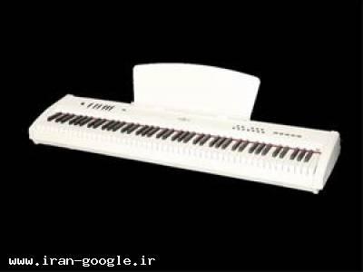 پیانو دیجیتال برگمولر DIGITAL PORTABLE PIANO P10