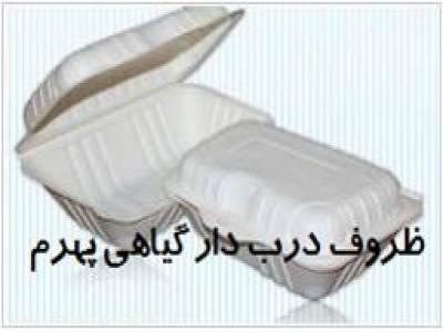 ظروف یکبار مصرف گیاهی پهرم