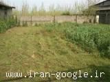 فروش زمین در نوخاله گیلان
