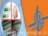 تولید کننده دستگاه سورتینگ مرغ