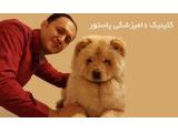 کلینیک دامپزشکی در مشهد