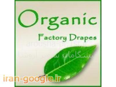 پخش سبزیجات آماده ارگانیک