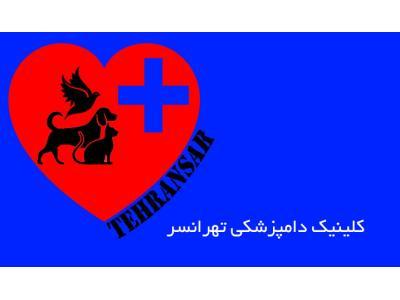 کلینیک دامپزشکی در غرب تهران - کلینیک دامپزشکی تهرانسر