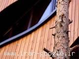 فروش چوب نما ، ترمووود thermowood