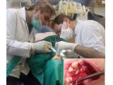 بهترین مطب دندانپزشکی در سعادت آباد