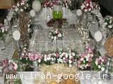 سفره عقد بابک جوکار در شیراز