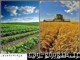 موسسه کشاورزی سر سبز بیات