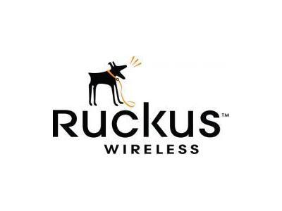 فروش تجهیزات حرفه ای    Ruckus Wireless