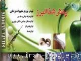 پخش شفا البرز