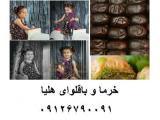خرمای  هلیا  مرکز تهیه و توزیع خرما  و رطب مضافتی بم  و  باقلوا استانبولی