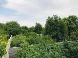 500 متر باغچه در شهریار