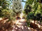 700 متر باغچه در شهریار