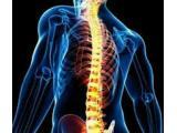 دکترسید علیرضا بصامپور جراح استخوان و مفاصل