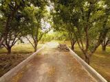 500 متر باغچه ی با شرایط عالی در شهریار
