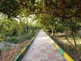 300 متر باغچه ی نقلی در ملارد