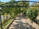 816 متر باغ در بهترین موقعیت شهریار